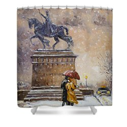 Colors Of Winter - Saint Louis Shower Curtain