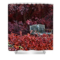 Colorspace Shower Curtain by Douglas Barnard