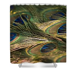 Colour And Design Shower Curtain