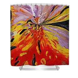 Colourburst Shower Curtain
