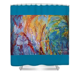 Colourful Abstract Shower Curtain by Ann Fellows