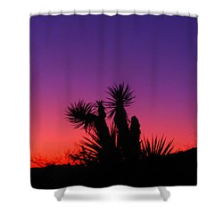 Colourful Arizona Shower Curtain