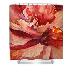 Colourful Hibiscus Shower Curtain by Mohamed Hirji