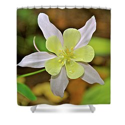 Columbine Charlie's Garden Shower Curtain by Ed  Riche