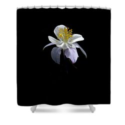 Shower Curtain featuring the photograph Columbine by David Andersen