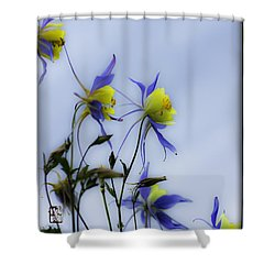 Columbines Shower Curtain by Peter v Quenter
