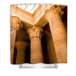 Column Head Art Shower Curtain by James Gay