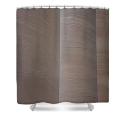 Column Sentries Shower Curtain