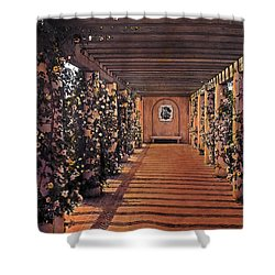 Columns And Flowers 2 Shower Curtain by Terry Reynoldson