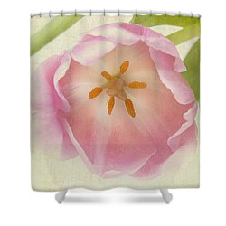 Come To Me Shower Curtain by A New Focus Photography