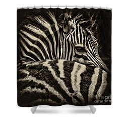 Comfort Shower Curtain