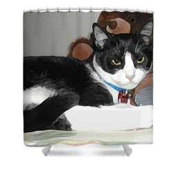 Comfy Kitty Shower Curtain by Jeanne A Martin