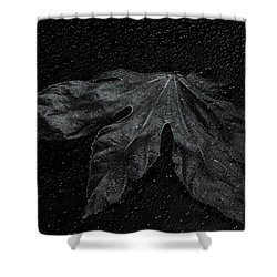 Coming Forward Shower Curtain