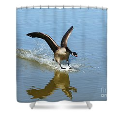 Coming In For A Landing Shower Curtain by Vivian Christopher
