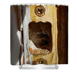 Shower Curtain featuring the digital art Comings And Goings by Aliceann Carlton