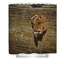 Shower Curtain featuring the photograph Common Buckeye With Torn Wing by Lynn Palmer