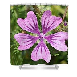 Common Mallow Flower Shower Curtain by George Atsametakis