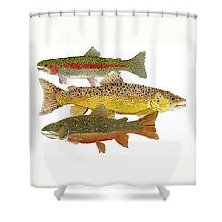 Common Trout  Rainbow Brown And Brook Shower Curtain