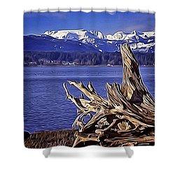 Shower Curtain featuring the digital art Comox Glacier And Estuary by Richard Farrington