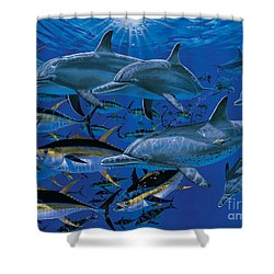 Companions Off00117 Shower Curtain by Carey Chen