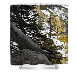 Composition At Lower Falls Shower Curtain by Michele Myers
