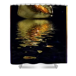 Conch Sparkling With Reflection Shower Curtain by Peter v Quenter