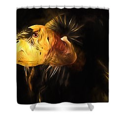 Condor Americana - Don't Mess Around With Me Shower Curtain