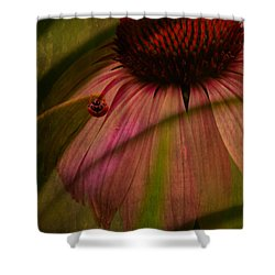 Cone Flower And The Ladybug Shower Curtain by Lesa Fine