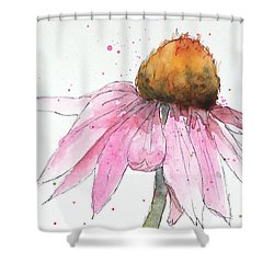 Coneflower 1 Shower Curtain