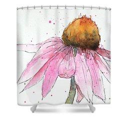 Coneflower 1 Shower Curtain