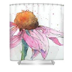 Coneflower 2 Shower Curtain