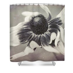 Coneflower In Monochrome Shower Curtain