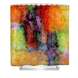 Confection Shower Curtain by Jim Whalen