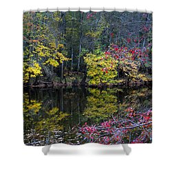 Congaree Swamp Shower Curtain by Skip Willits