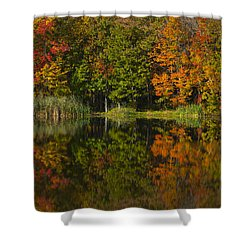 Connecticuts Colors Shower Curtain by Karol Livote