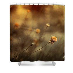 Connections Shower Curtain by Trish Mistric