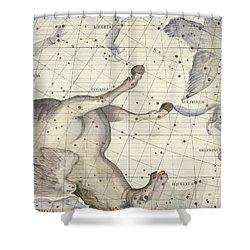 Constellation Of Pegasus Shower Curtain
