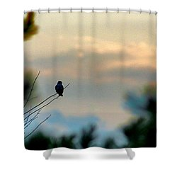 Contemplation Shower Curtain by Bruce Patrick Smith