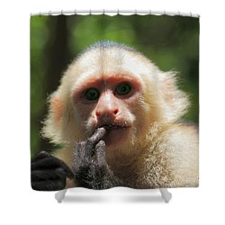 Shower Curtain featuring the photograph Contemplation by Patrick Witz