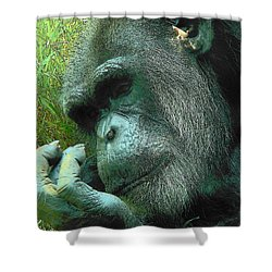 Shower Curtain featuring the photograph Contemplative Chimp by Rodney Lee Williams