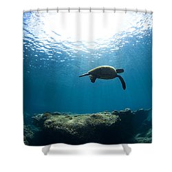 Contempltion Shower Curtain by Sean Davey