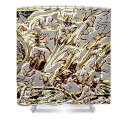 Shower Curtain featuring the photograph Contemporary Art Display by Kellice Swaggerty