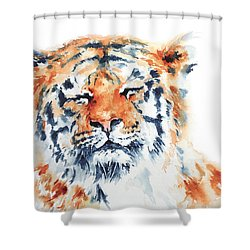 Contentment Shower Curtain by Stephie Butler