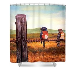 Conversation With A Fencepost Shower Curtain