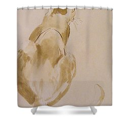 Coo Coo Michelle Shower Curtain by Nancy Kane Chapman