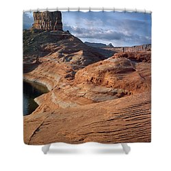 Cookie Jar Shower Curtain
