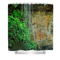 Cool And Refreshing Shower Curtain by Kaye Menner
