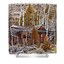 Cool Colorado Rural Rustic Rundown Rocky Mountain Cabin  Shower Curtain by James BO  Insogna
