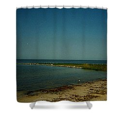 Cool Day For A Swim Shower Curtain by Amazing Photographs AKA Christian Wilson