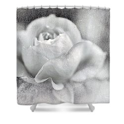 Cool Rose Shower Curtain